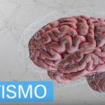 Pesquisador brasileiro chefia estudos avançados sobre o autismo nos EUA.